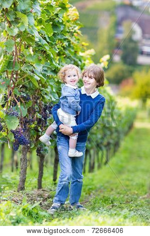 Portrait Of A Boy Holding His Little Baby Sister Playing In A Beautiful Sunny Autumn Vine Yard With