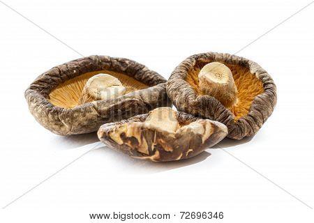 Dehydrated Shiitake Mushrooms