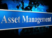 picture of asset  - Asset Management Representing Business Assets And Directors - JPG