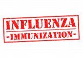 pic of influenza  - INFLUENZA IMMUNIZATION  - JPG