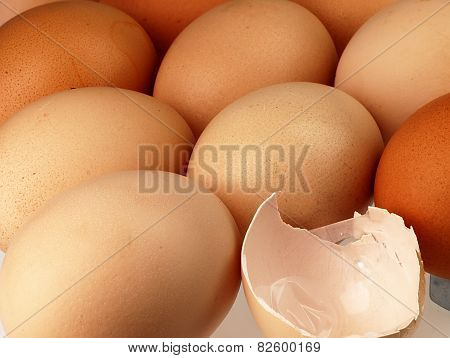Eggshell Against Equal Rows Lying Eggs.