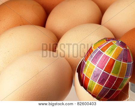 Colorful Easter Egg In The Company Of Ordinary Eggs.
