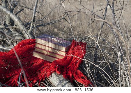 Books On A Red Shawl On A Fallen Tree