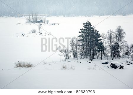 An image of the Eibsee at winter