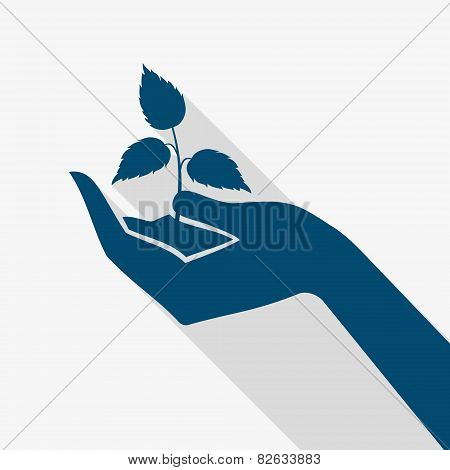 Hand Holding Plant Sprout