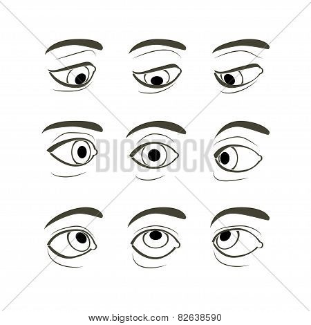 Front View of the Right Human Eye in Nine View Modes