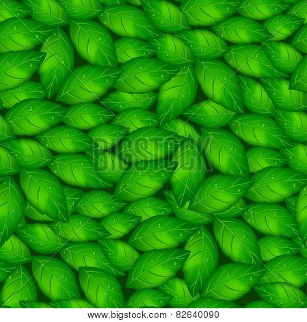 Green Basil Leaves In A Seamless Pattern
