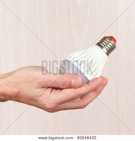 Hand holding ecofriendly led lightbulb on light wood background