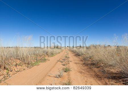Kalahari Trail