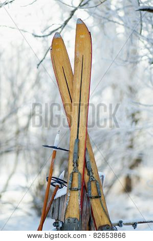 Vintage Skis in Snow Scene