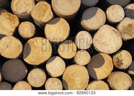 Lumber Stack.