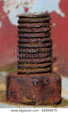 Close-up Of A Screw