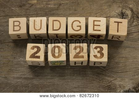Budget for 2023 wooden, blocks on a wooden background