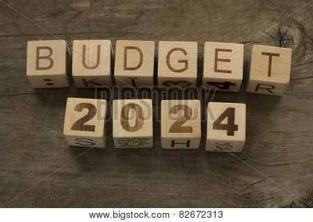 Budget for 2024 wooden, blocks on a wooden background