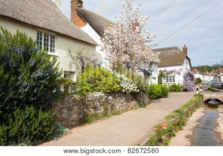 Otterton Devon