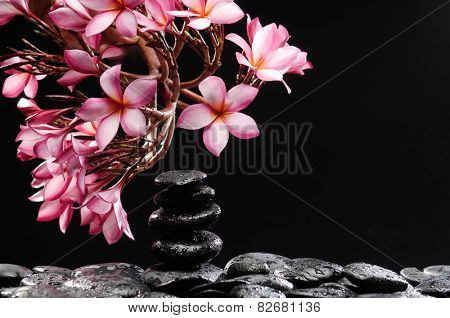 branch of frangipani with stacked black wet stones