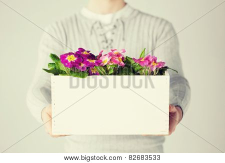 close up of man holding  big pot with flowers