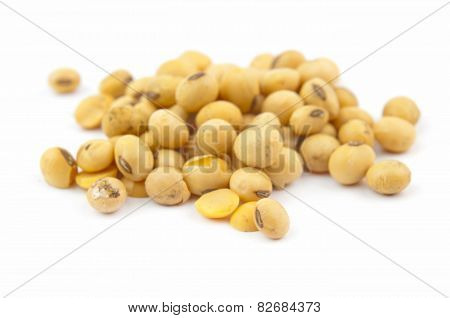 soybean isolated