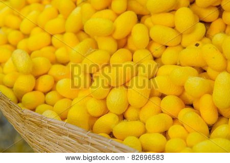 Yellow Silkworm Cocoon Shell Through The Silk Route