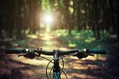 stock photo of black eyes  - Mountain biking down hill descending fast on bicycle - JPG