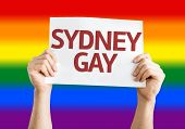 picture of gay flag  - Sydney Gay card with rainbow flag background - JPG