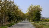 image of paved road  - Old paved road between Greifswald and Stralsund Mecklenburg - JPG