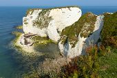 image of cliffs  - Chalk cliffs Old Harry Rocks Isle of Purbeck in Dorset south England UK the most easterly point of the Jurassic Coast like the Needles isle of Wight - JPG
