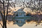 image of thomas jefferson memorial  - Washington DC  - JPG