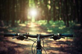 stock photo of biker  - Mountain biking down hill descending fast on bicycle - JPG