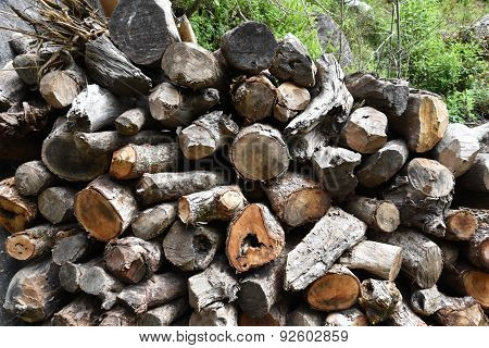 Closed Up The Woodpile