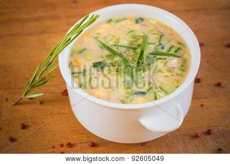 russian cold vegetable soup on yogurt, sour-milk base -  okroshka