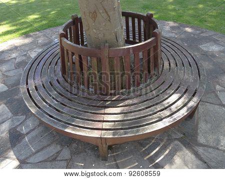 Circular Bench Pathway