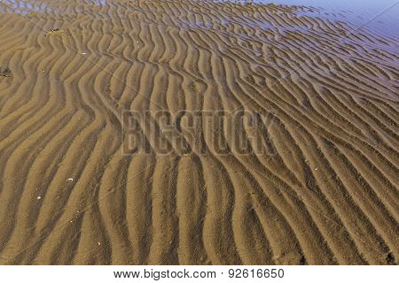 Sand ripples on a north America beach.