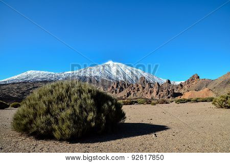 Desert Landscape in Volcan Teide National Park