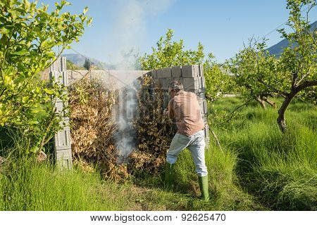 Burning Pruning Waste