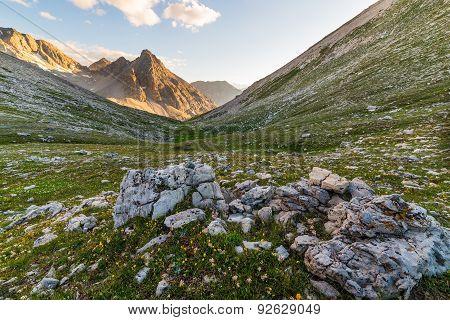 Glowing Mountain Peaks And Flowering Meadow