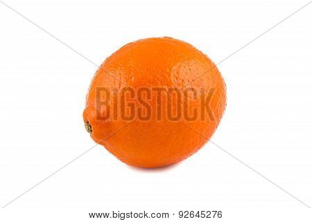 Image of ripen orange minneola