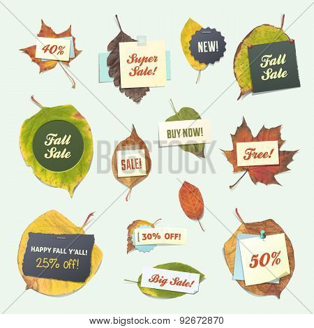 Fall Leaves with Paper Notes