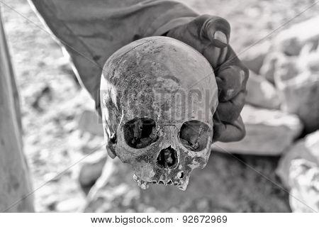 Man Holding A Skull