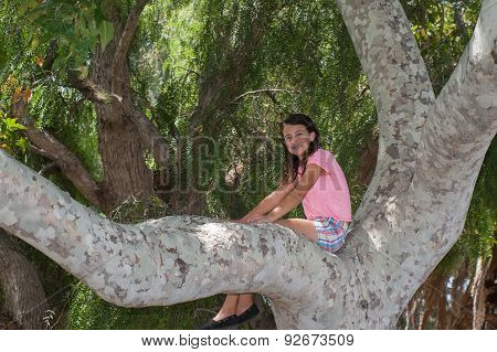 Girl up in tree