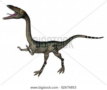 Coelophysis dinosaur - 3D render