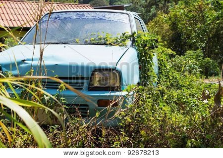 Vehicle Abandoned To Their Fate And Overgrown