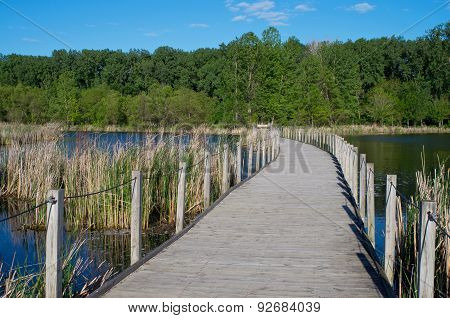 Wood Lake Park Boardwalk Scenic