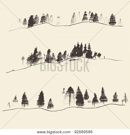 Mountains With Fir Forest Contours Engraving