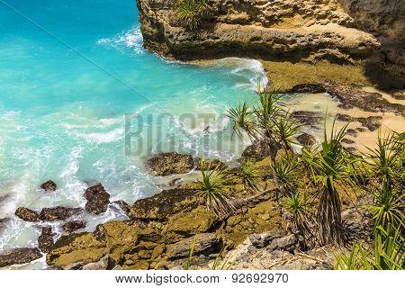 Tropical Coastline.