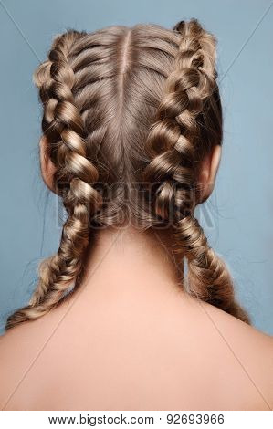 Beauty Model With Braids From Back