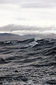 image of sakhalin  - a storm at sea near the island of Sakhalin - JPG
