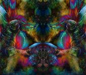 image of emerald  - fairy emerald green phoenix bird colorful ornamental fantasy painting collage - JPG