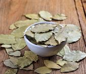 picture of bay leaf  - bay leaves in white ceramic bowl on wood - JPG