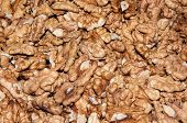 stock photo of diabetes mellitus  - Walnut kernels contain various elements that enhance memory and helps in the treatment of diabetes mellitus - JPG